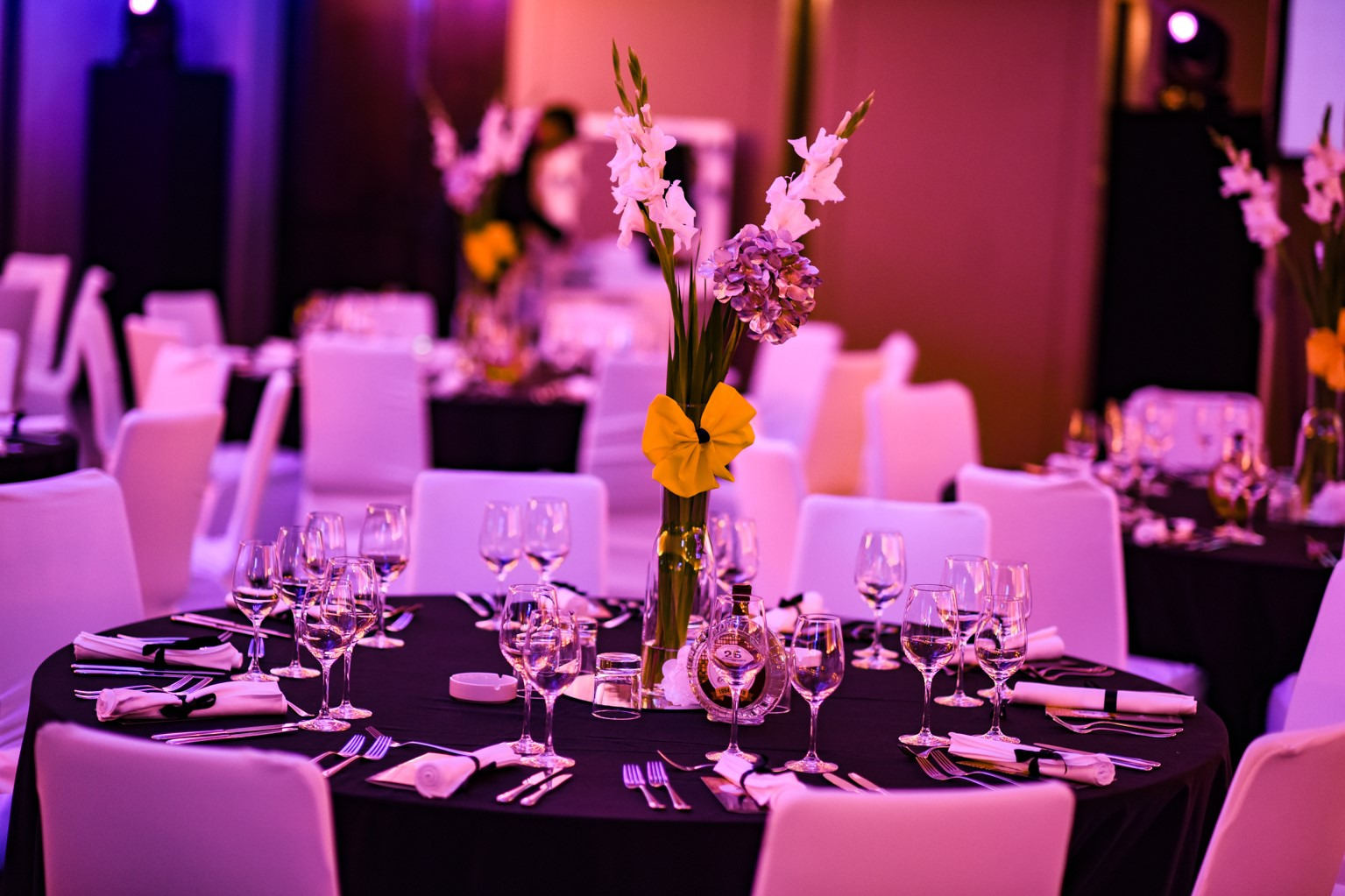 Celebrating 25 years of DIM Trade, organized by Event Planner and Ana Aleksic - venue Crowne Plaza Hotel